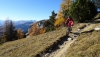 varneralp_15_2_025